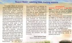 watching trees,tracking seasons
