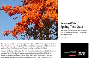Seasonwatch- Spring Tree Quest