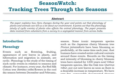 Tracking trees through the seasons