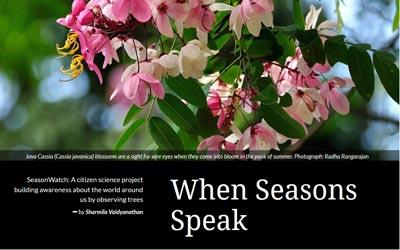 When seasons speak