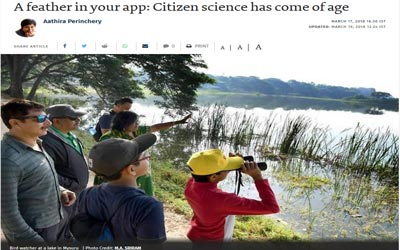 A feather in your app: Citizen science has come of age